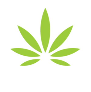 SEO Tips for Marijuana Dispensaries Author Profile