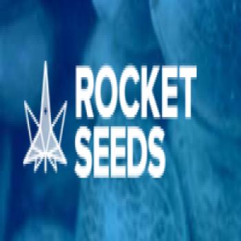 's Rocket Seeds Resume