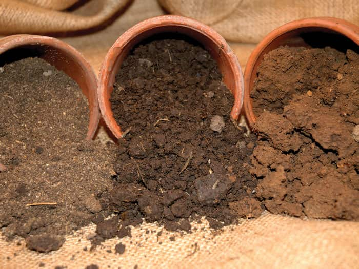 Soil in Pots