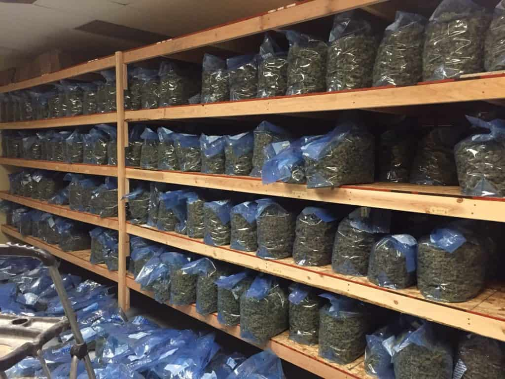 Cannabis inventory shelved