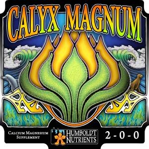 Calyx Magnum by Humboldt
