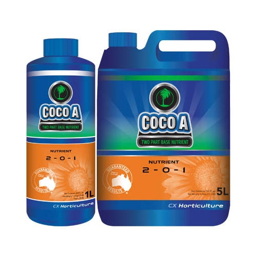 Coco A by