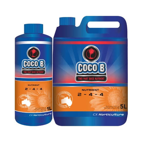Coco B by