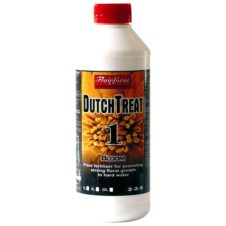 DutchTreat Bloom by