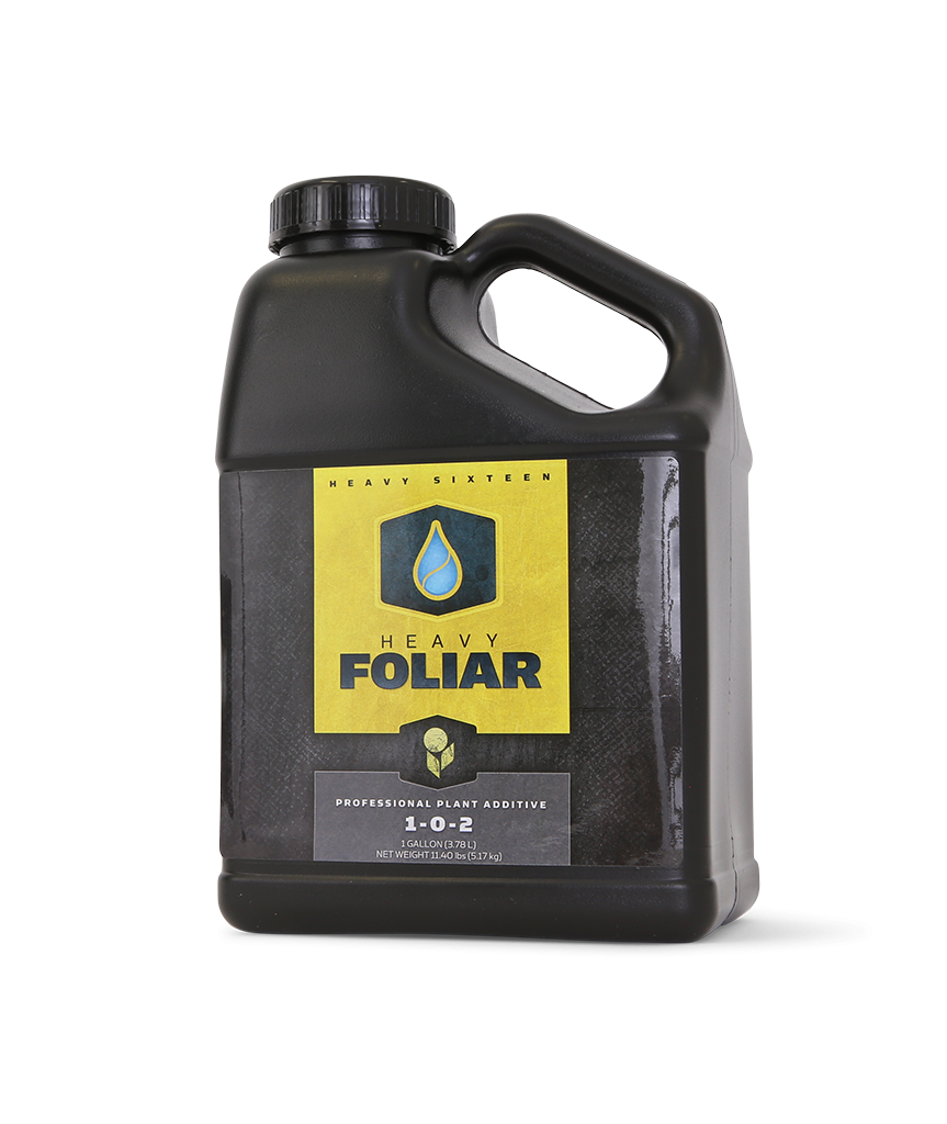 Foliar by Heavy 16