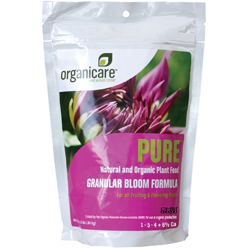 Pure Granular Bloom by