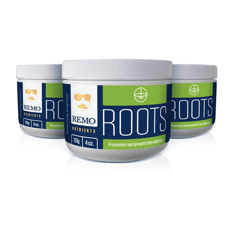 Remo Roots by Remo Nutrients