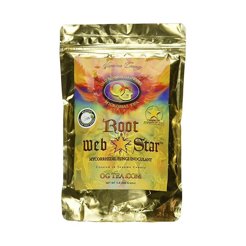 Root WebStar by