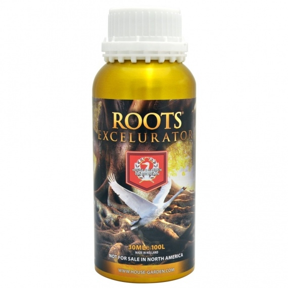 Roots Excelurator by House & Garden