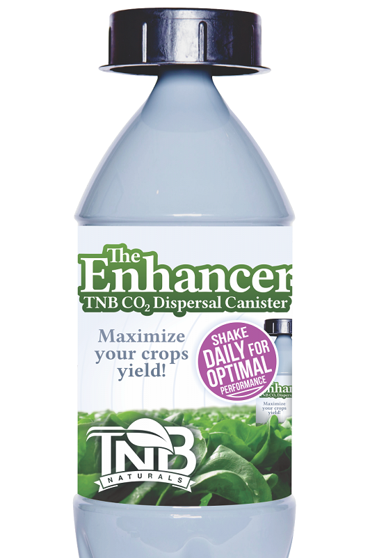 The Enhancer by TNB Naturals