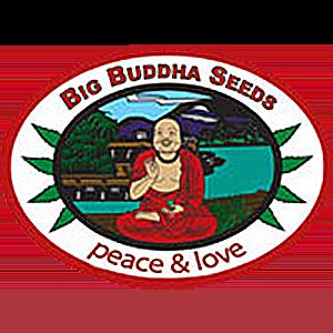 Big Buddha Seeds Seed Company