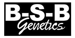 BSB Genetics Seed Company