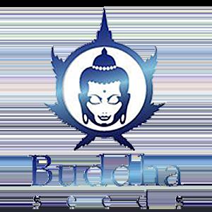 Buddha Seeds Seed Company