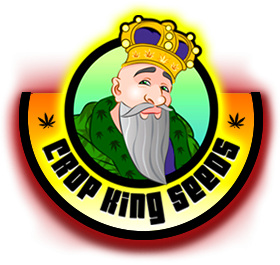 Crop King Seeds Marijuana Seed Company