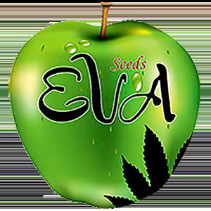 Eva Seeds Seed Company