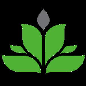 Female seeds Seed Company