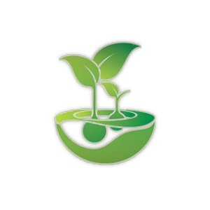 Feminised Seeds Company Seed Company