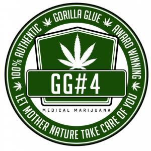 GG strains Seed Company