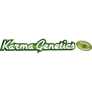 OG Kush by Karma Genetics