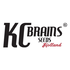 KC Brains Seed Company