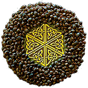 Mandala Seed Company