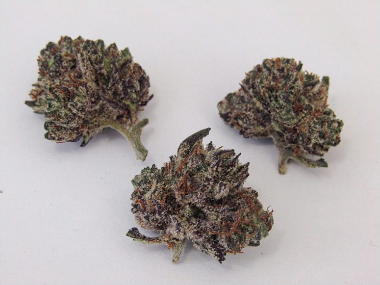 Nice nugs of Purple Kush