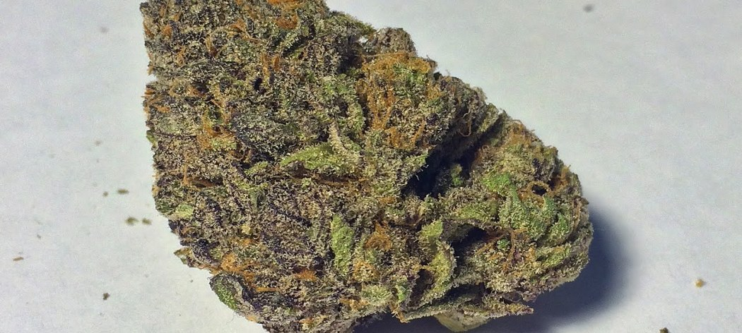 Grand-daddy purp, LARGE nug - Granddaddy Purple Marijuana Strain