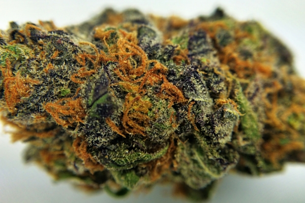 Granddaddy Purp - Granddaddy Purple Marijuana Strain