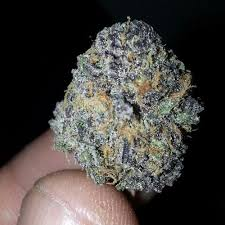 Real DEEP grand-daddy purp