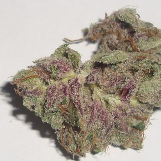 Small nug of purple kush - Purple Kush